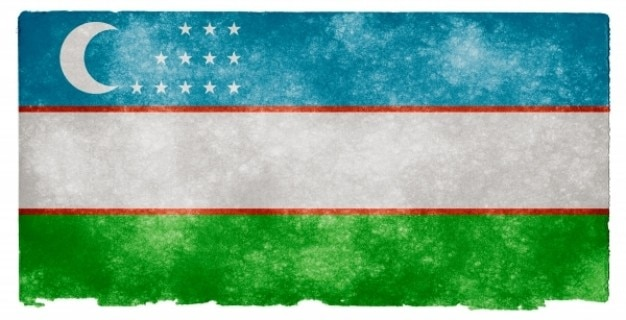 Uzbekistan grunge flag
