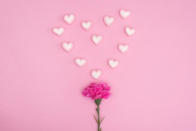 Valentines süßigkeiten mit nelke blume auf rosa blackground