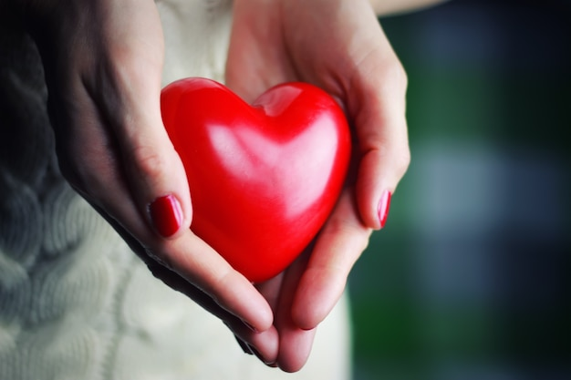 Valentinsgrußherz der weiblichen hand