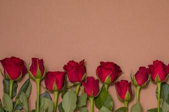 Valentinsgrußtageshintergrund, nahtloser nackter Hintergrund mit Rotrosengrenze