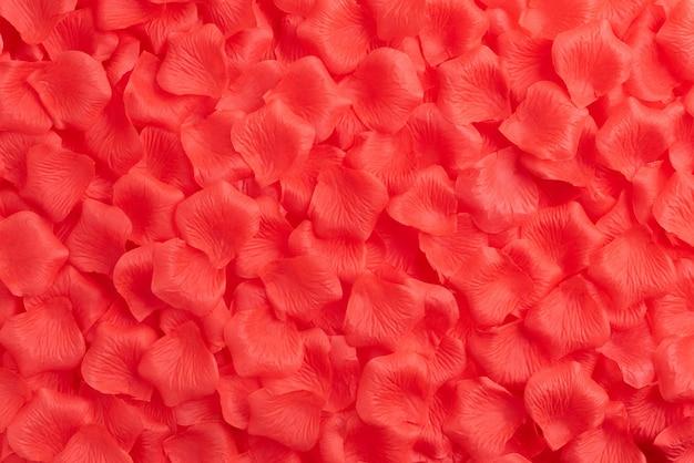 Valentinsgrußtageshintergrund, rote rosen auf weißem hölzernem hintergrund.