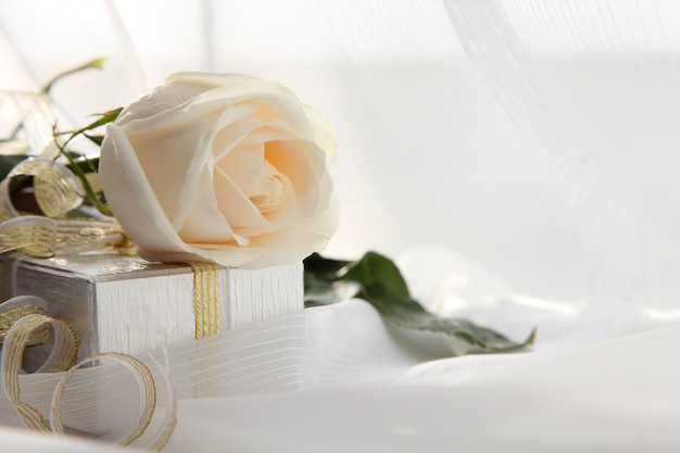 Valentinstag. weiße rose und ein geschenk.