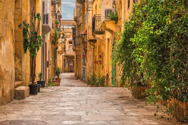 Valletta, malta. alte mittelalterliche leere straße mit gelben gebäuden und blumentöpfen
