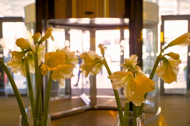 Vase mit gelben gladiolen vor dem hintergrund von glastüren. lobby im öffentlichen bereich.