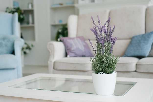 Vase mit lavendelblüten in der inneneinrichtung des wohnzimmers in hellen farben mit blauer farbe