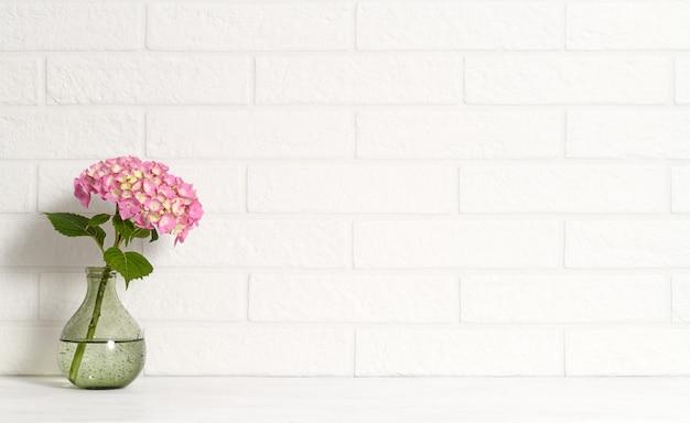 Vase mit rosa hortensie auf weißer mauer