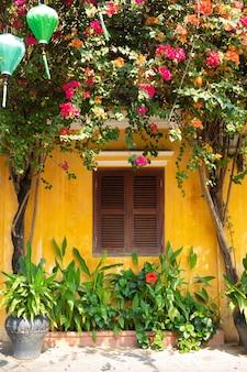 Vasen mit schönen blumen, einer gelben wand und einem braunen fenster mit chinesischen laternen auf einer straße in der altstadt von hoi an, vietnam