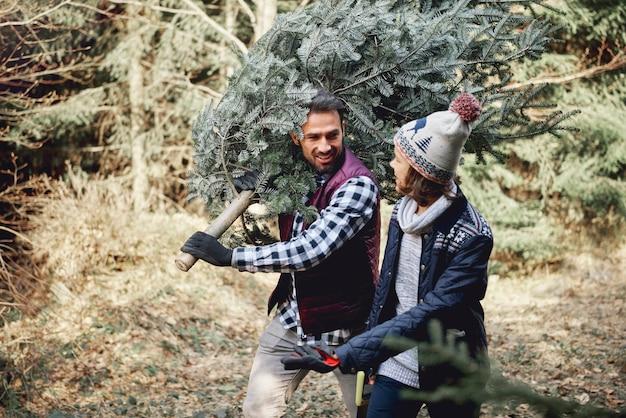 Vater und sohn tragen frischen weihnachtsbaum