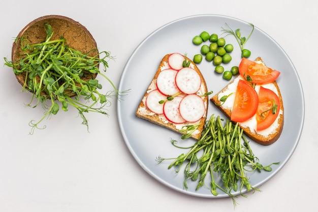 Vegetarische sandwiches mit tomaten und radieschen auf grauer keramikplatte