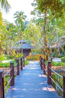 Vegetation im hotelpark, designlösung, landschaftsgestaltung mit tropischen pflanzen