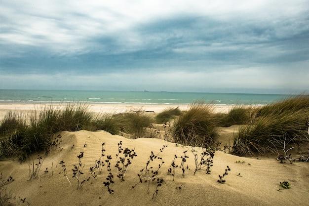 Venedig lido sanddünen strand