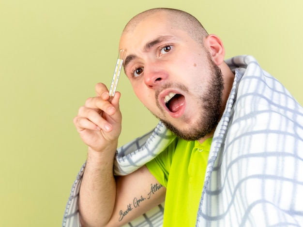 Verärgerter junger kranker mann, der in plaid gewickelt hält, hält thermometer isoliert auf olivgrüner wand