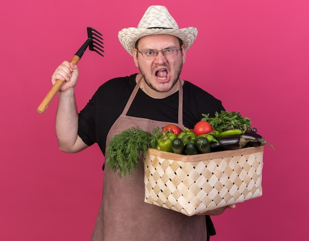 Verärgerter junger männlicher gärtner, der gartenhut trägt, der gemüsekorb-erhöhungsrechen lokalisiert auf rosa wand hält