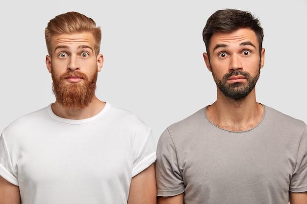 Verblüffte emotionale junge bärtige männer, die erstaunt sind, dass ein freund ein teures auto gekauft hat. ingwer-männchen mit verblüfftem gesichtsausdruck und sein bruder posieren zusammen an der weißen wand. omg-konzept