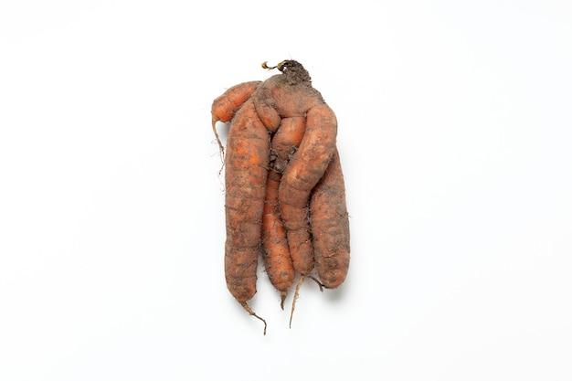 Verbundene schmutzige karotten. hässliches gemüse. reduzierung von lebensmittelabfällen.