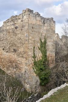 Verfallener mittelalterlicher festungsturm, umrankt von efeu