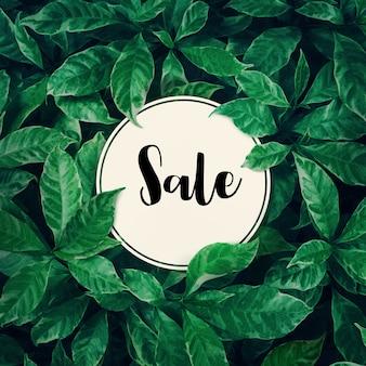 Verkauf mit grünem blatthintergrunddesign mit weißem papier