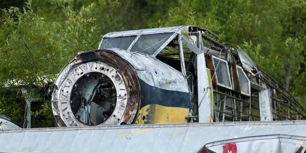 Verlassenes wasserflugzeug in einem wald, see des holzes, ontario, kanada