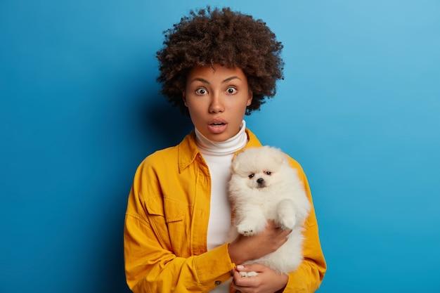 Verlegene dunkelhäutige dame posiert mit welpen, fühlt sich gut zusammen, überrascht von etwas schrecklichem, trägt gelbe kleidung, posiert im studio vor blauem hintergrund.