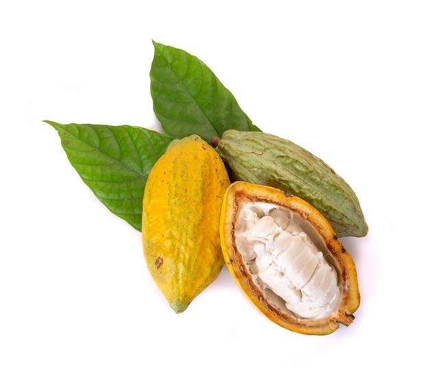 Verschieden vom frischen kakao trägt mit dem halb geschnittenen und grünen blatt früchte, das auf weißem hintergrund lokalisiert wird