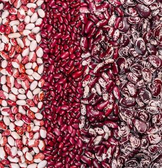 Verschiedene arten mehrfarbiger bohnen lagen in form vertikaler streifen