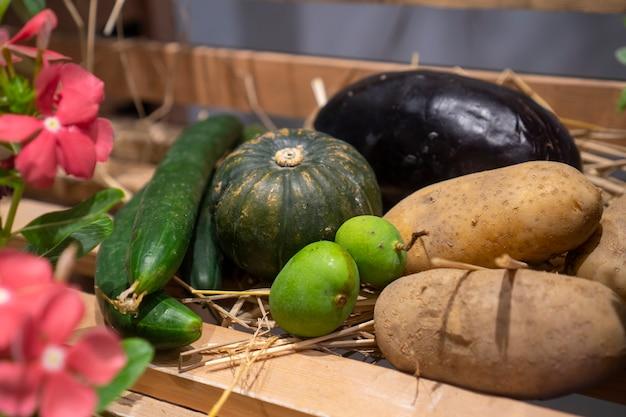 Verschiedene arten von tropischen früchten werden auf verschiedene arten platziert.