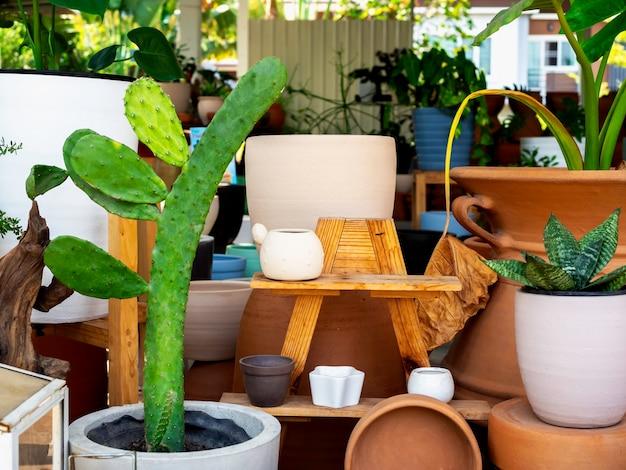 Verschiedene bunte keramikpflanzentöpfe mit großer grüner kaktusdekoration auf holzregal im innengarten. geometrischer keramiktopf.