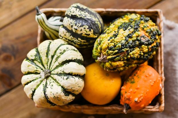Verschiedene erntedank-mini pumpkins auf einem rustikalen holztisch.