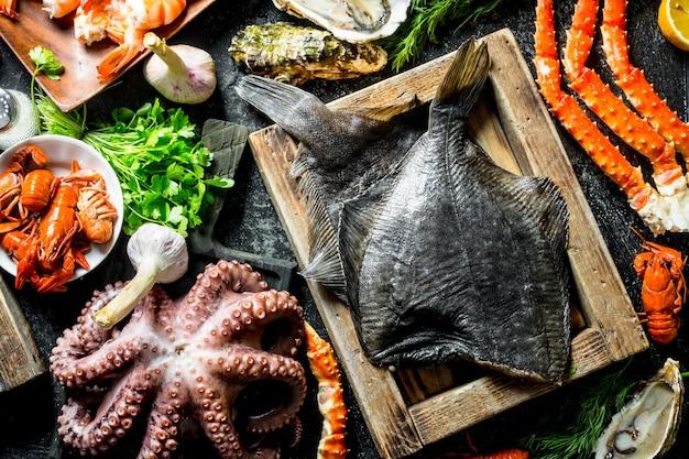 Verschiedene fische, tintenfische, garnelen und krebse mit kräutern. draufsicht