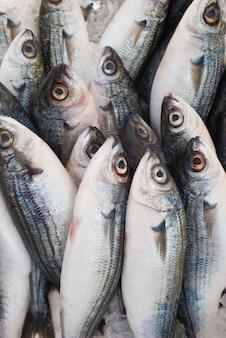 Verschiedene frische fische und meeresfrüchte am fischmarkt