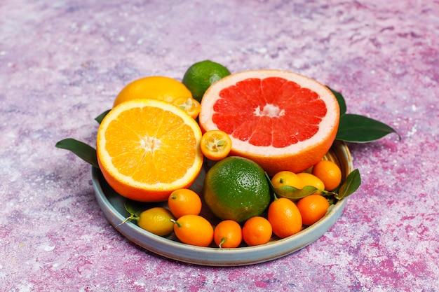 Verschiedene frische zitrusfrüchte