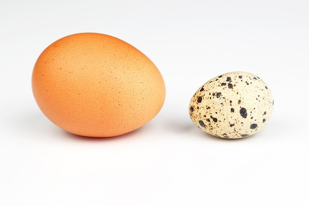 Verschiedene hühnereier auf einem weißen
