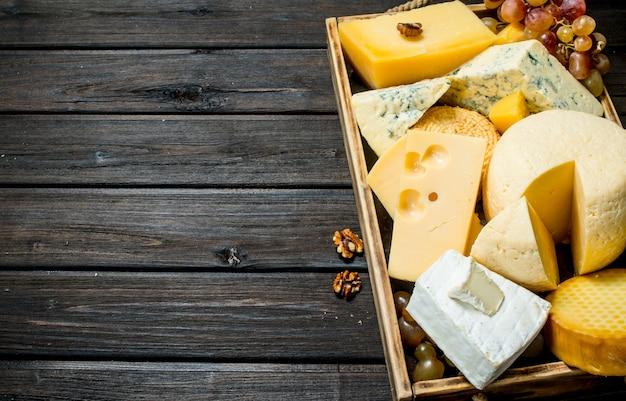 Verschiedene käsesorten in einem holztablett mit trauben. auf einem holz.