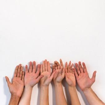 Verschiedene leute, die ihre palme gegen einfache weiße oberfläche zeigen
