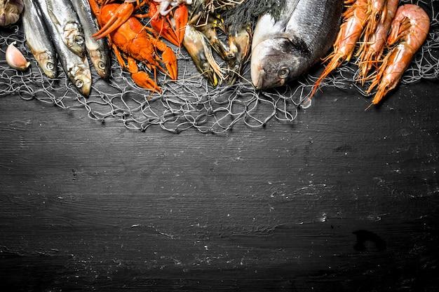 Verschiedene meeresgarnelen, schalentiere und hummer am fischernetz