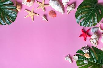 Verschiedene Muscheln mit Starfishes und Monstera-Blättern auf violettem Pastellhintergrund.