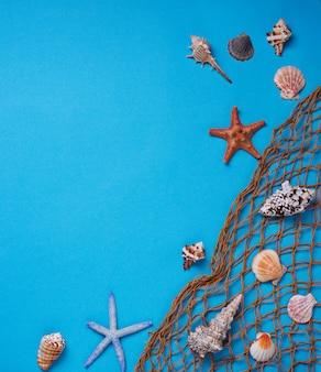 Verschiedene muscheln und fischnetz auf blauem hintergrund