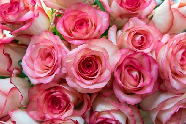 Verschiedene rosenköpfe. verschiedene weiche rosen und blätter verstreut auf einem weinlesehintergrund, draufsicht