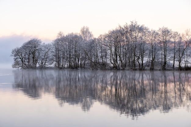 Verschneite bäume in der nähe des sees mit reflexionen im wasser an einem nebligen tag