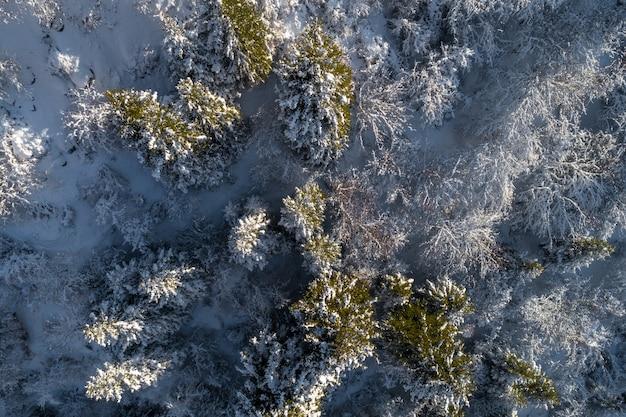 Verschneiter winterwald aus der vogelperspektive