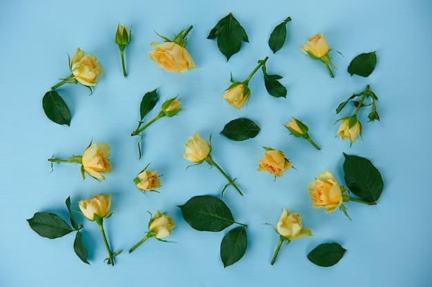 Verstreute gelbe rosen auf blauer oberfläche