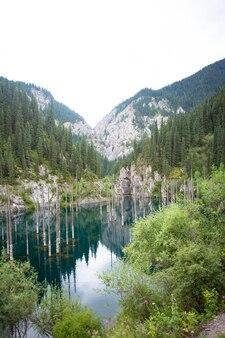 Versunkener wald im blauen bergsee