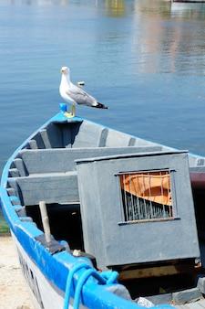 Vertikal einer möwe, die auf einem boot am meer thront