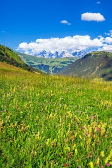 Vertikale ansicht der französischen alpen im sommer