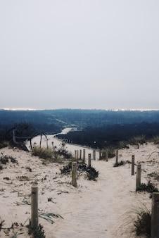 Vertikale ansicht eines kleinen pfades in den dünen unter einem bewölkten düsteren himmel