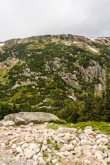 Vertikale aufnahme der felsigen berge, die an einem wolkigen tag im gras bedeckt sind
