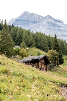 Vertikale aufnahme der schweizer alpen
