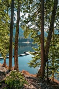 Vertikale aufnahme der wunderschönen landschaft des lost lake, whistler, bc kanada