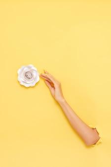Vertikale aufnahme des arms einer frau, die eine rose über einer gelben wand greift