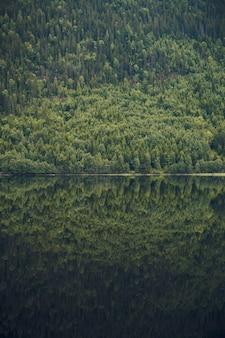 Vertikale aufnahme des spiegelbildes des schönen baumbedeckten berges im ruhigen see in norwegen